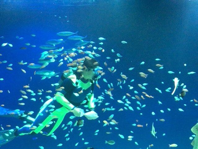 マリホ水族館