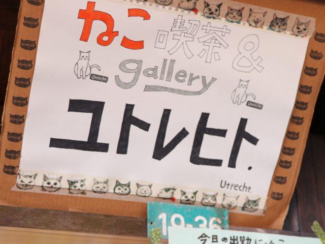 尾道の猫カフェ「ユトレヒト」で保護猫ちゃんと遊びました♪